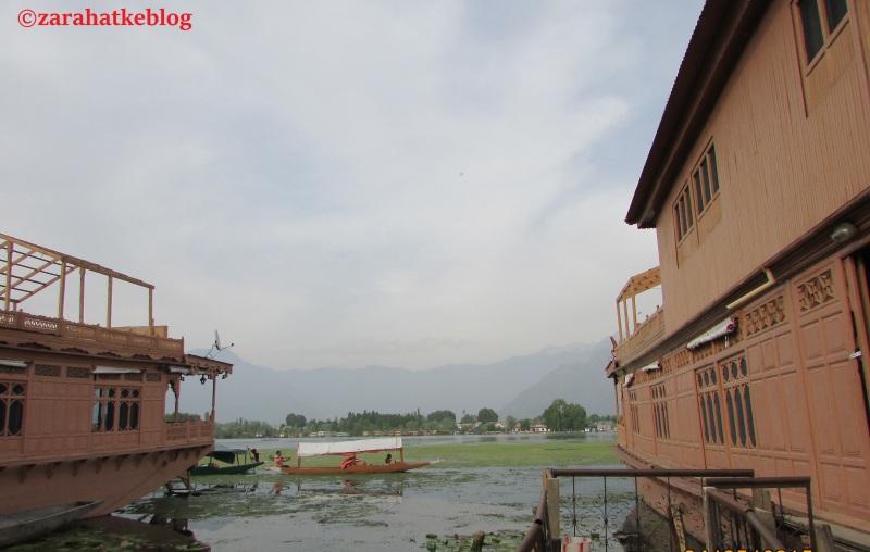 Kashmir 1