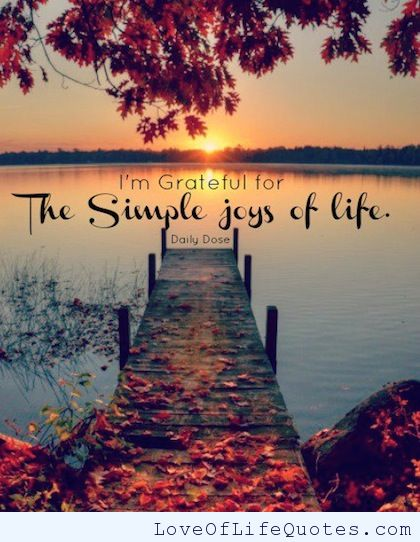 Blog 118 - 5 small Joys of Life - 1